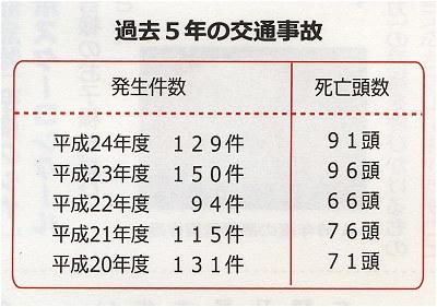 H25_shikajiko02