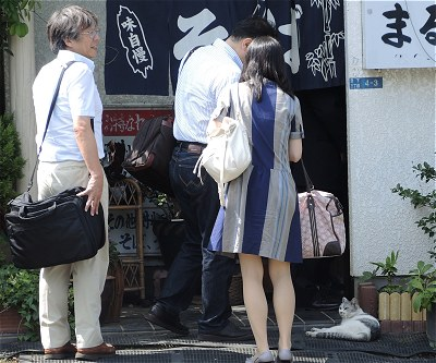 Kashimaneko