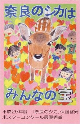 Narashika_h26