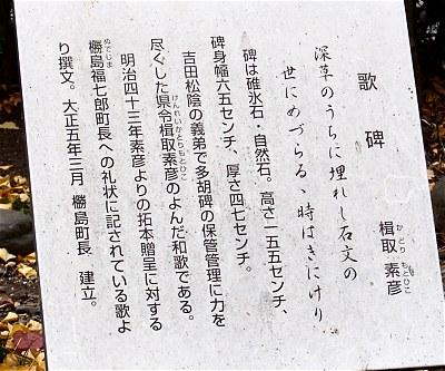 Tagokatorihi02