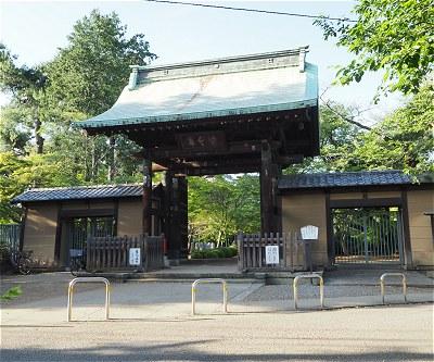 Gotokuji14