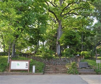 Setagayajo01