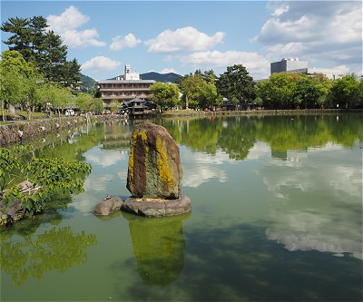 Sarusawa201505a