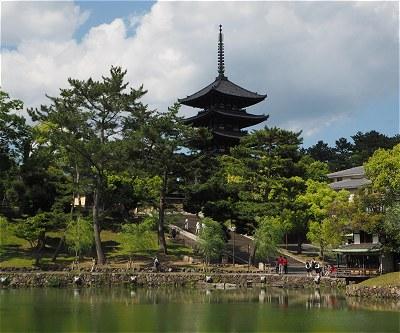 Sarusawa201505c