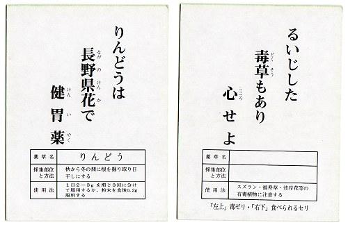 Yakuso04