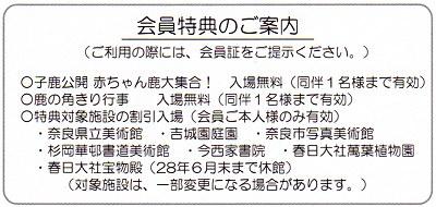 Narashika_h28b