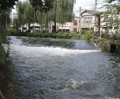 Hirosegawa05
