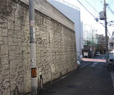 Sanadamaru10