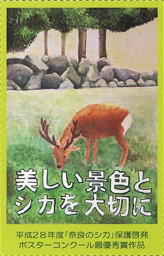 Narashika_h29b