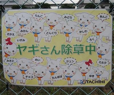 Tachiyagi04