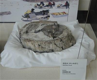 Kyokuchiken01
