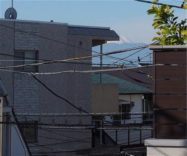 Fuji20180112a