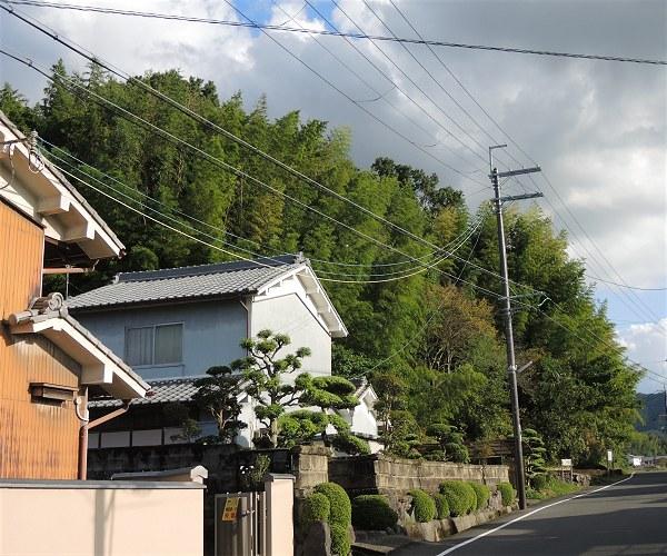 Yukiki11