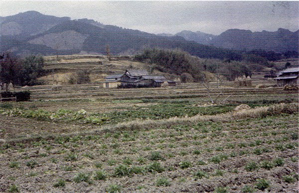 Asukagen02