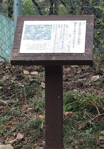 Ogawamanyo01