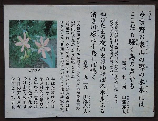 Ogawamanyo03