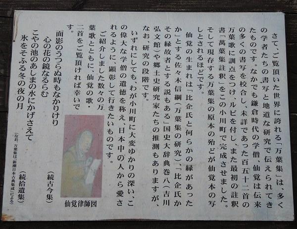 Ogawamanyo06