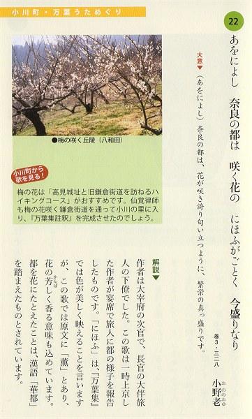 Ogawamanyo09