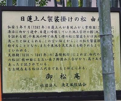 Senzokuike28_2