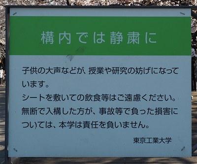 Sakura20190404d