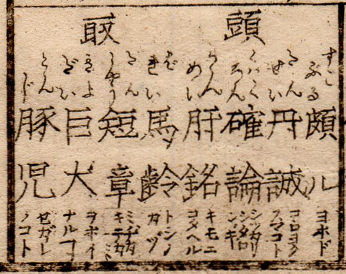 Kangohayami27
