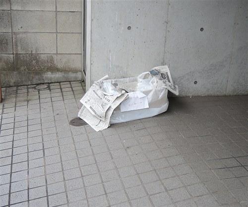Tsubame202007b